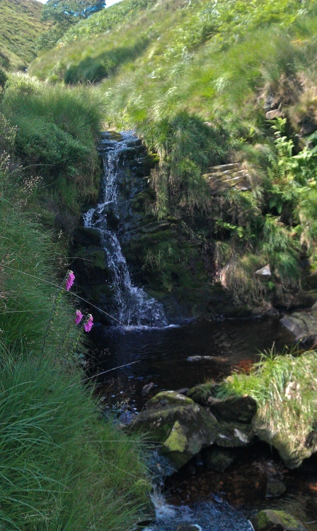 Waterfall near Wesenden Brook