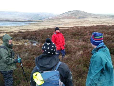 National Trust Hare Survey 2015 Marsden Moor
